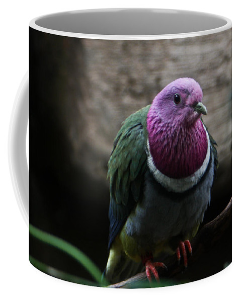 Ring Coffee Mug featuring the photograph Ring necked dove by Douglas Barnett