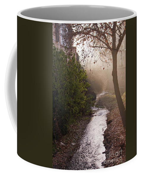 Carrera Del Darro Coffee Mug featuring the photograph River In Afternoon Sunhaze by Ingela Christina Rahm