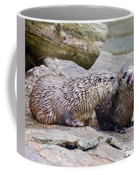 River Otters Coffee Mug featuring the photograph River Otters by Kerri Farley