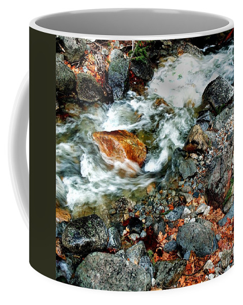 California Scenes Coffee Mug featuring the photograph River Rock Leaves by Norman Andrus