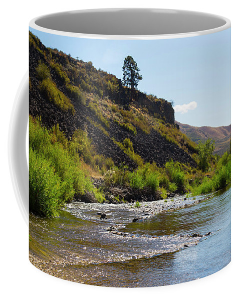 River Coffee Mug featuring the photograph River View by Dart and Suze Humeston