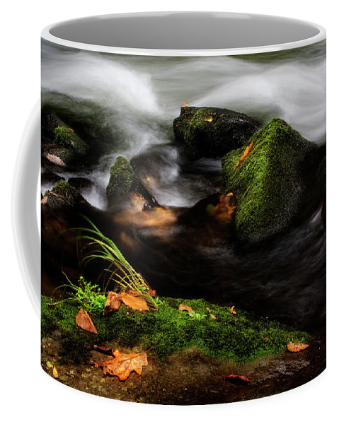 Water Coffee Mug featuring the photograph Rivers Edge by Greg Mimbs