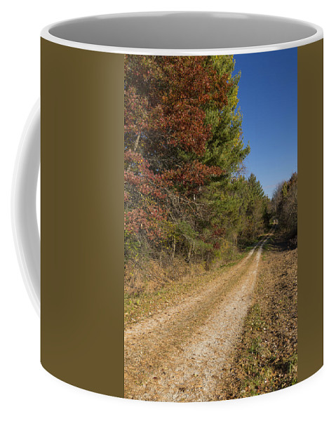 Road Coffee Mug featuring the photograph Road In Woods Autumn 5 by John Brueske