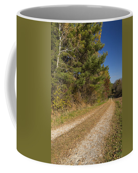 Road Coffee Mug featuring the photograph Road In Woods Autumn 6 by John Brueske