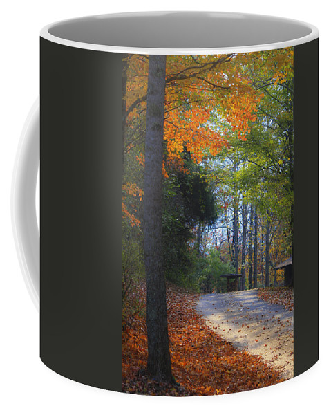 Cabin Coffee Mug featuring the photograph Road To Cabin 2 by Teresa Mucha