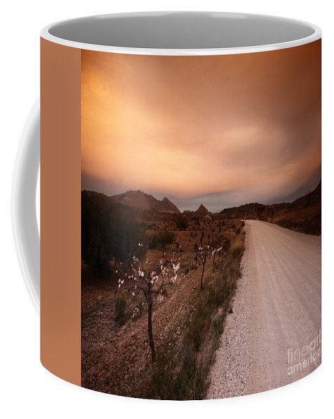 Almond Coffee Mug featuring the photograph Road To Nowhere by Angel Ciesniarska