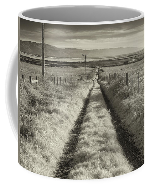Fence Coffee Mug featuring the photograph Road To Nowhere by Greg Nyquist