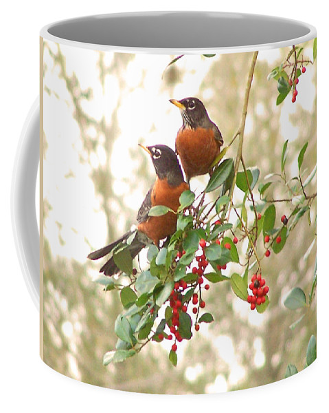 Nature Coffee Mug featuring the photograph Robins In Holly by Peg Urban