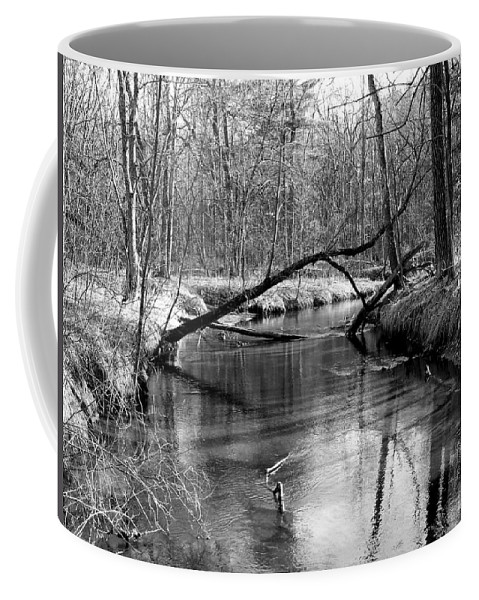 Black And White Coffee Mug featuring the photograph Roche-a-cri State Park by Lauren Radke
