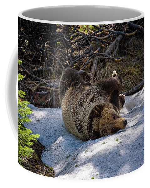 2017 Coffee Mug featuring the photograph Roll In The Snow by Julie Picardi