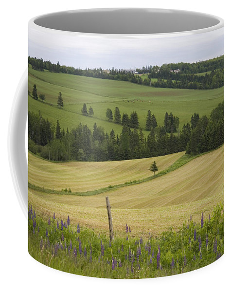Prince Edward Island Coffee Mug featuring the photograph Rolling Farmland Stretches by Taylor S. Kennedy