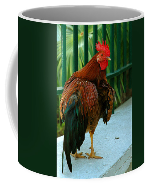 Rooster Coffee Mug featuring the photograph Rooster By The Fence by Susanne Van Hulst