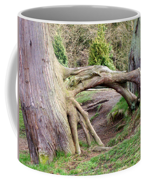 Tree Coffee Mug featuring the photograph Roots Of Strength by Mary Mikawoz