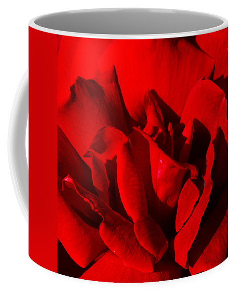 Rose Coffee Mug featuring the photograph Rose 2 by Anthony Jones