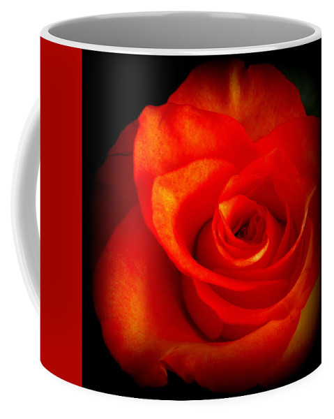 Rose Coffee Mug featuring the photograph Rose 2 by Dianne Pettingell