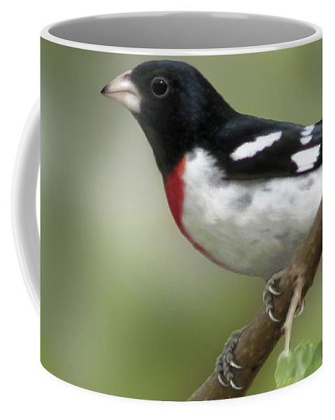 Nature Coffee Mug featuring the digital art Rose Breasted Grosbeak by Barbara Hymer