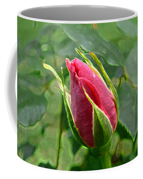 New England Photos Coffee Mug featuring the photograph Rose Bud by Nancie DeMellia