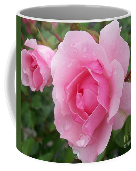 Rose Coffee Mug featuring the painting Rose Closeup by Eric Schiabor