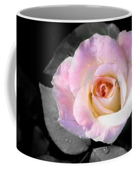Princess Diana Rose Coffee Mug featuring the photograph Rose Emergance by Steve Karol