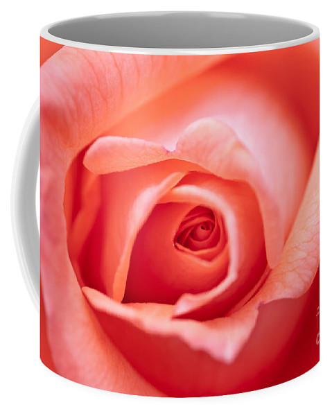 Abstract Coffee Mug featuring the photograph Rose Petals by Michal Boubin