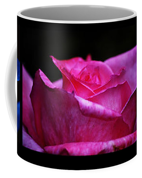 Clay Coffee Mug featuring the photograph Rose Tryptich by Clayton Bruster