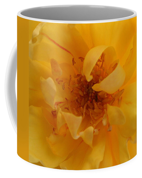 Rose Coffee Mug featuring the photograph Rose Yellow by Marna Edwards Flavell