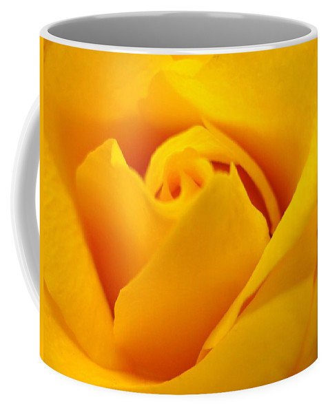 Rose Coffee Mug featuring the photograph Rose Yellow by Rhonda Barrett