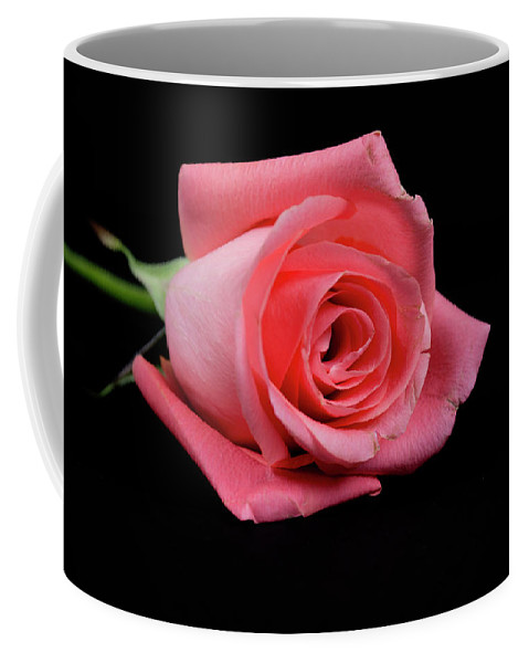 Roses Coffee Mug featuring the photograph Rosebud On Black by Susan Newcomb
