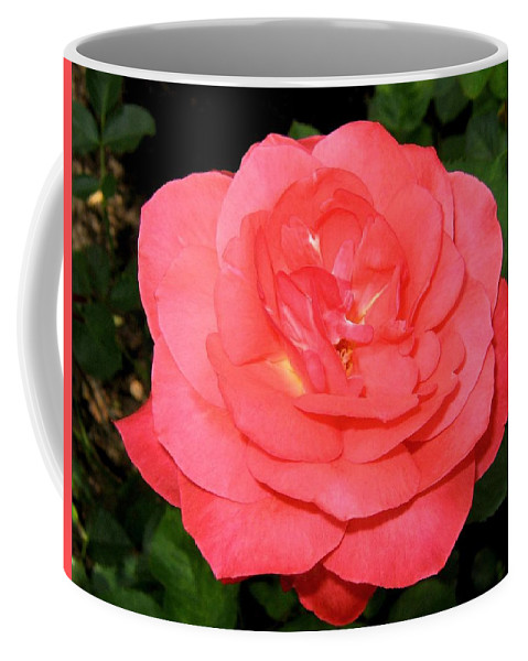 Rose Coffee Mug featuring the photograph Roses 3 by Will Borden