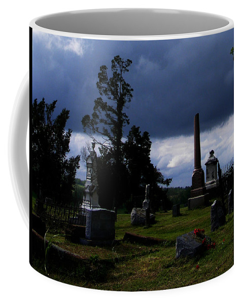 Landscape Coffee Mug featuring the photograph Roses After The Storm by Rachel Christine Nowicki
