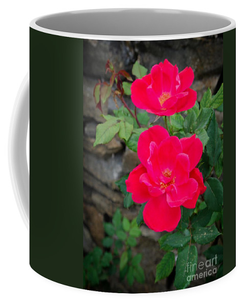 Rose Coffee Mug featuring the photograph Roses Are Red by Gary Richards