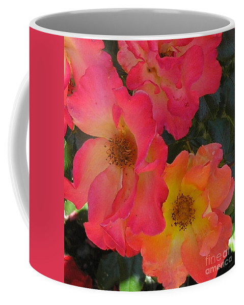 Rose Coffee Mug featuring the photograph Roses by Dean Triolo