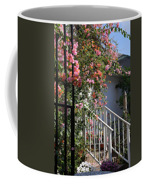 Roses Coffee Mug featuring the photograph Roses In Winter by Susanne Van Hulst