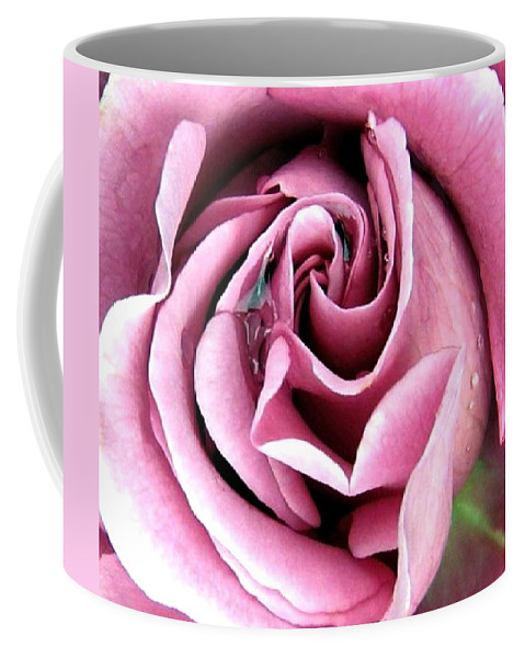 Romantic Coffee Mug featuring the photograph Roses Roses by Will Borden