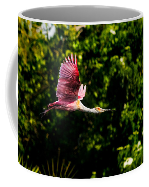 Avian Coffee Mug featuring the photograph Rosie In Flight by Christopher Holmes