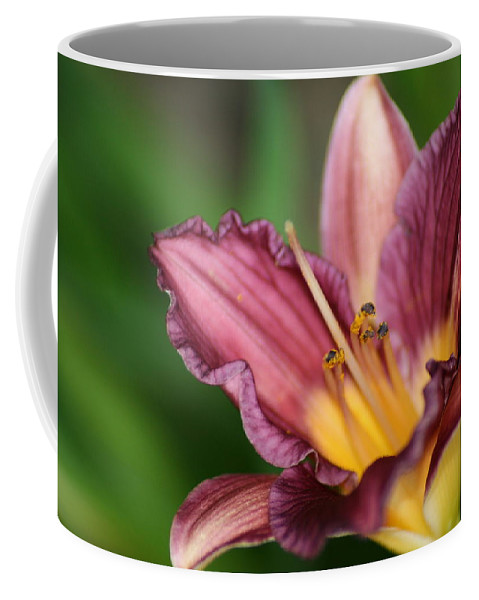 Floral Coffee Mug featuring the photograph Royalty by Marla McFall