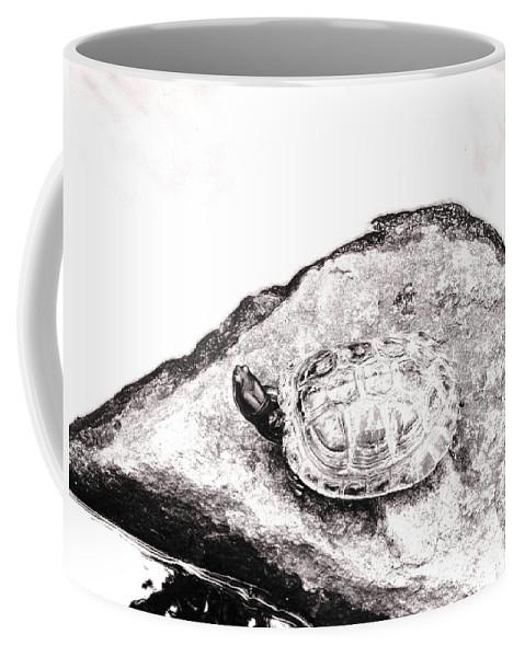 Pond Coffee Mug featuring the photograph Rubbernecking Pond Turtle by Deborah Crew-Johnson