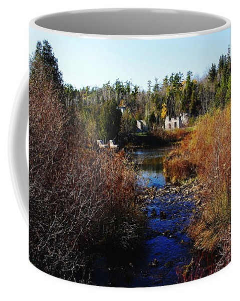 Rockwood Coffee Mug featuring the photograph Ruins In Autumn by Debbie Oppermann