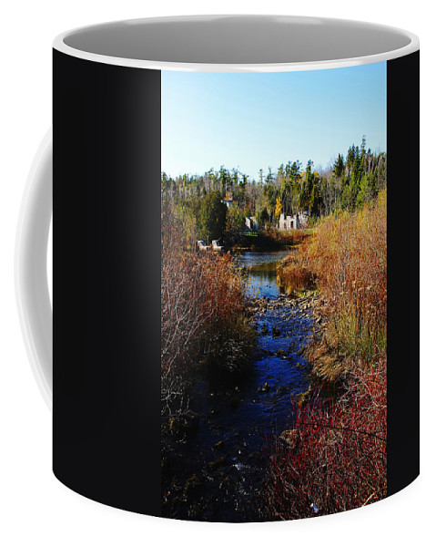 Rockwood Coffee Mug featuring the photograph Ruins In Fall by Debbie Oppermann