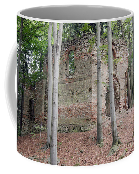 Chapel Coffee Mug featuring the photograph Ruins Of The Baroque Chapel Of St. Mary Magdalene by Michal Boubin
