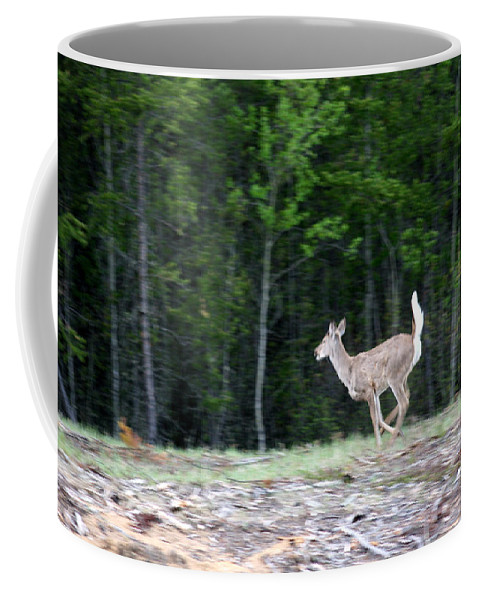 Deer Whitetail Doe Running Wild Nature Coffee Mug featuring the photograph Running Deer by Andrea Lawrence