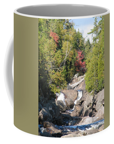 Waterfall Coffee Mug featuring the photograph Running Through The Woods by Kelly Mezzapelle