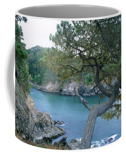 Russian Gulch Coffee Mug featuring the photograph Russian Gulch by Soli Deo Gloria Wilderness And Wildlife Photography