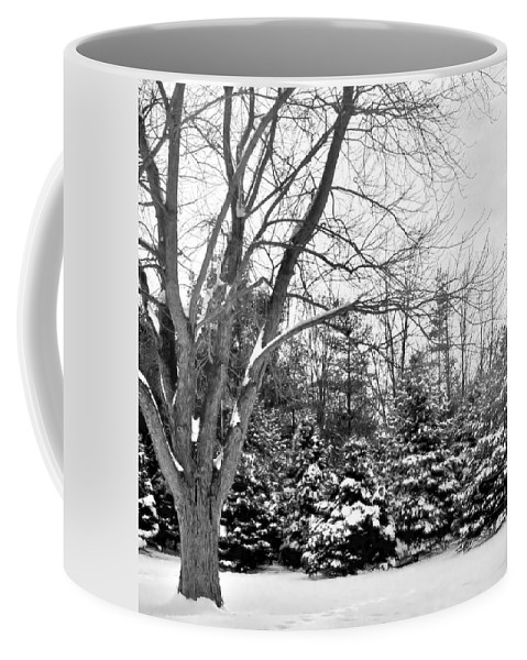 Winter Coffee Mug featuring the photograph Rustic Chill by Michelle McPhillips