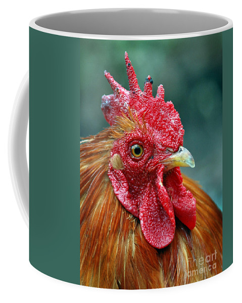Animails Coffee Mug featuring the photograph Rusty Rooster by Norman Andrus
