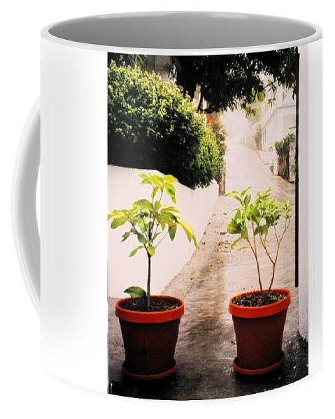 Saba Coffee Mug featuring the photograph Saba by Ian MacDonald
