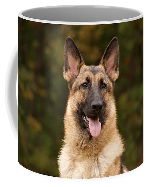 German Shepherd Dog Coffee Mug featuring the photograph Sable German Shepherd by Sandy Keeton