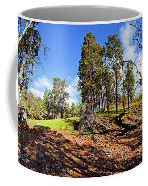 Sacred Canyon Flinders Ranges South Australia Australian Landscape Pano Panorama Outback Spring Coffee Mug featuring the photograph Sacred Canyon, Flinders Ranges by Bill Robinson