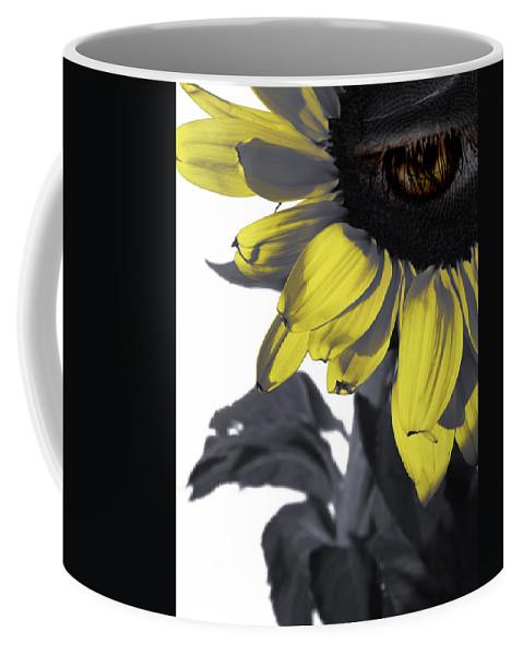 Sad Coffee Mug featuring the photograph Sad Sunflower by Kelly Jade King