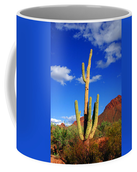 Photography Coffee Mug featuring the photograph Saguaro Np by Susanne Van Hulst